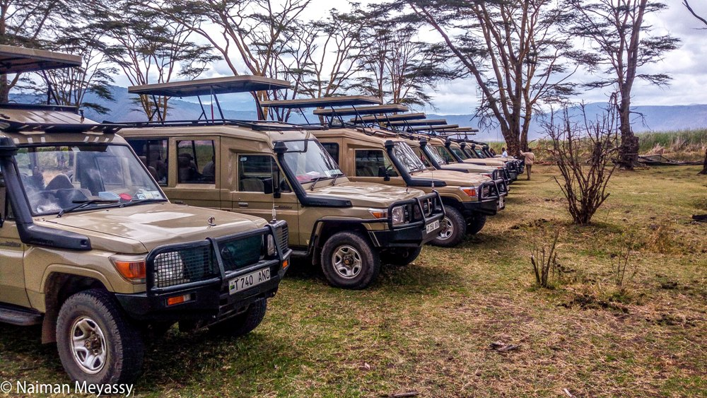 Tanzania Game Drive Safari