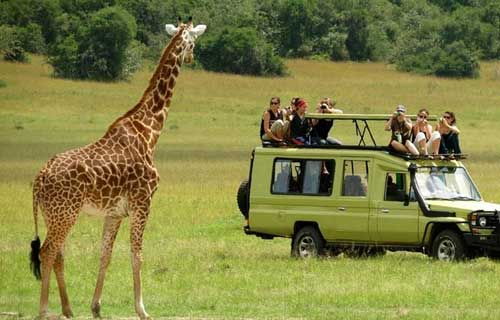 6 Days Tarangire Serengeti Ngorongoro And Lake Manyara Safari Camping