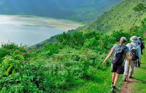 Day Trip To Ngorongoro Crater Highland