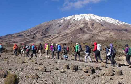 Kilimanjaro Trekking Machame Route 6 Days 5 Nights