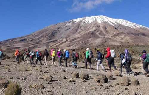Kilimanjaro Trekking Machame Route 6 Days 5 Nights