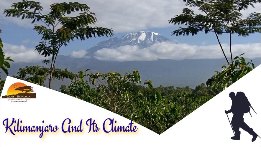 Kilimanjaro And Its Climate