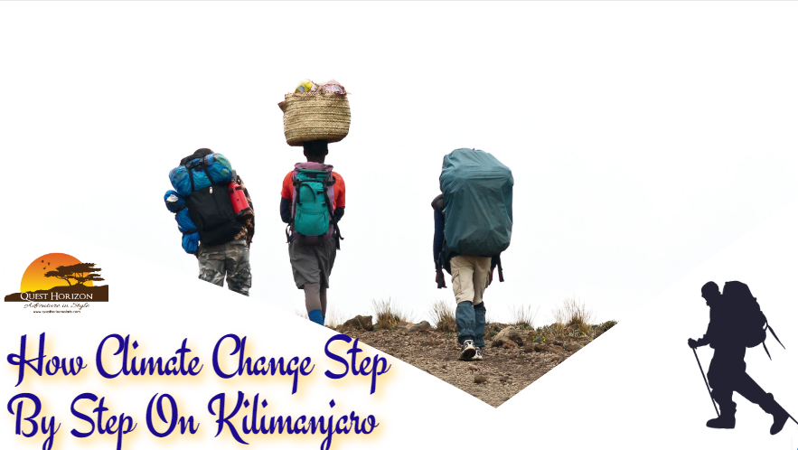 How Climate Change Step By Step On Kilimanjaro