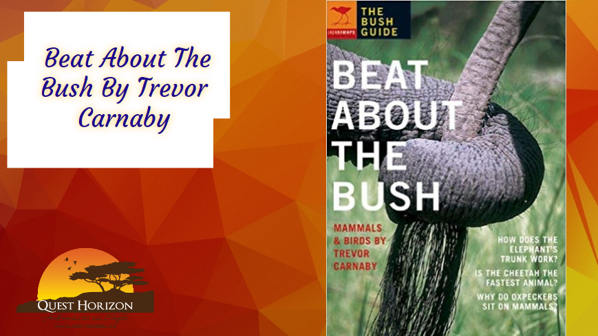 Beat About The Bush By Trevor Carnaby