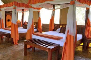 where-to-stay-in-tanzania-safari